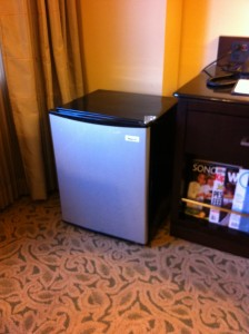 Personal Extra Mini Fridge Delivered to My Room