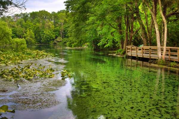 Wekiwa Springs State Park, Orlando