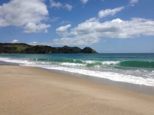 Coromandel - New Zealand's Summer Gem!
